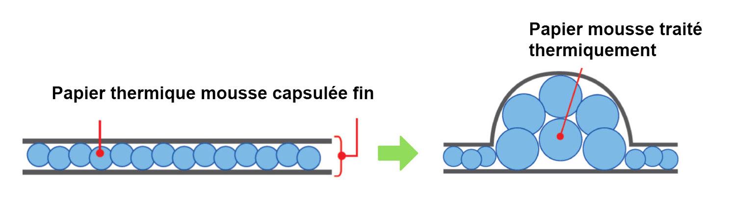 Processus d'impression thermique braille du papier capsule